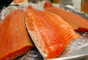 Oregon Salmon Commission